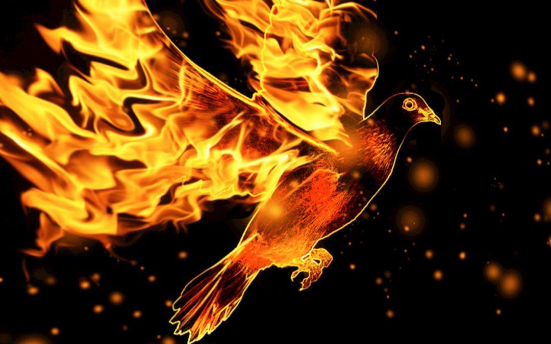 "Renungan, 29 April 2019: ""Hidup Baru Dalam Roh"" (Yoh 3:1-8)"